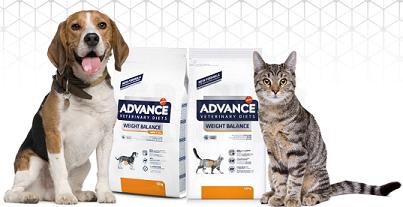 Articoli Pet Food – Cibo per Cani e Gatti